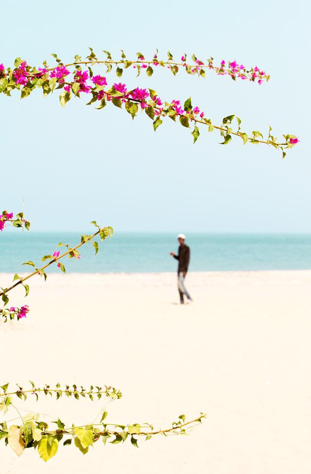 Gambia - Bilder hos Ving