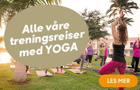 alle våre turer yoga og meditasjon